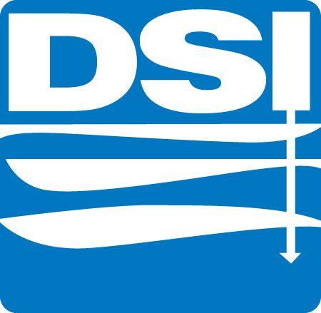 Drillers Service-DSI